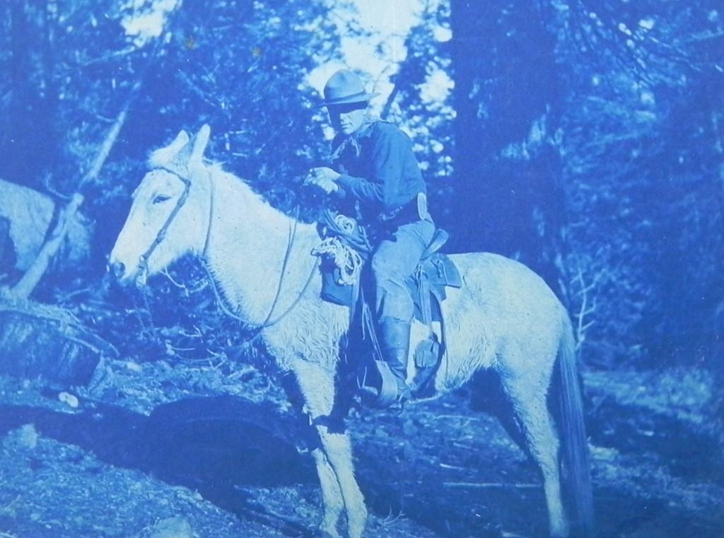 Mora, in Yosemite in 1904