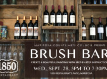 Brush Bar @ 1850