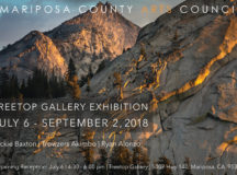 New Treetop Gallery Exhibition!